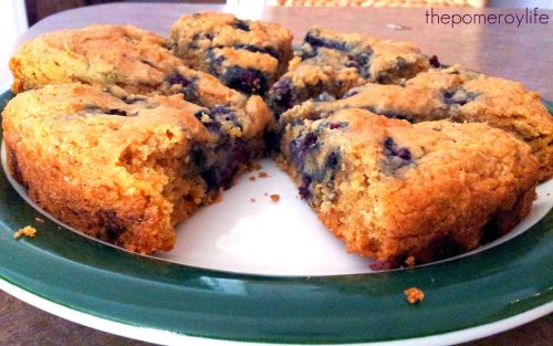 Blackberry Scones!