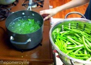 Green Beans - 4