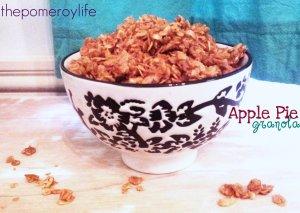 Apple Pie Granola - 2