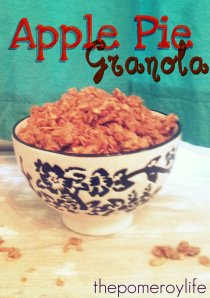 Apple Pie Granola - 3