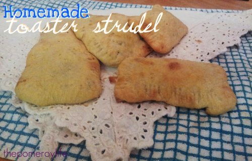 Toaster Strudel - 7 (2)