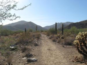 paths 3