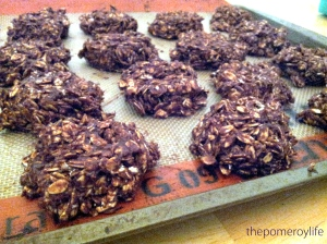 fudgy and delicious  oh and super quick too!