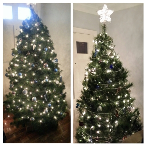 on the left is last year's tree, and this year's tree is on the right.  =)